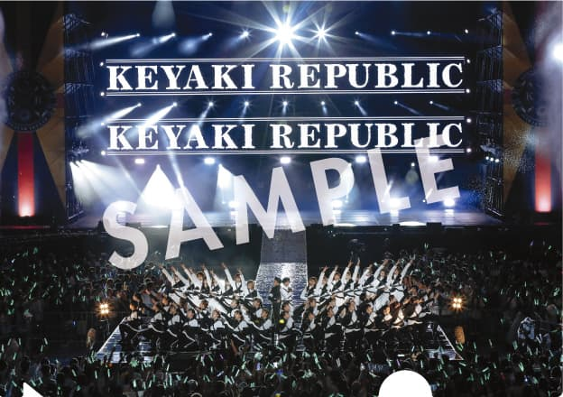 keyakizaka_A5clearfile_sample_11_sevennet