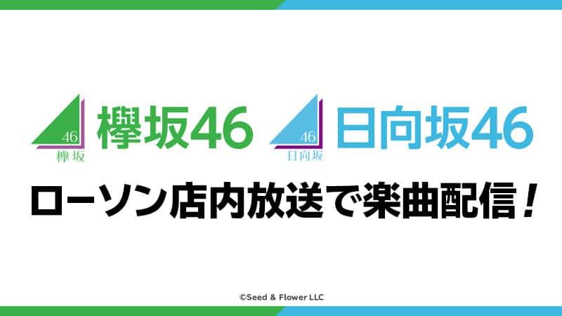 20200731_keyakihinata